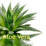 Aloe Vera Gel, 1:1, 100 ml