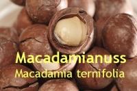 Macadamianussöl, 100 ml
