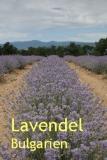 Lavendelöl, (Bulg.), 10ml