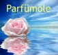 Fixateur für Parfümöle, 10 ml
