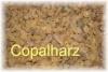 Copal - Harz, 100g