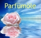 Weihrauch, Parfümöl, 10ml