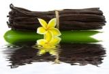 Vanille Bourbon, Parfümöl, 30 ml (100ml/13,20Euro)