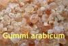 Gummi arabicum, gemahlen, 100g