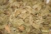 Myrtenblätter, ganz, 100g